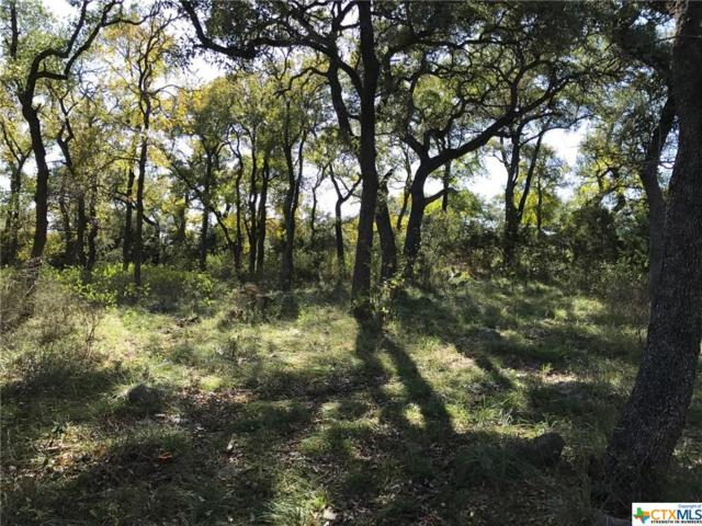 824 Shady Hollow, New Braunfels, TX 78132 (MLS #330363) :: The Suzanne Kuntz Real Estate Team