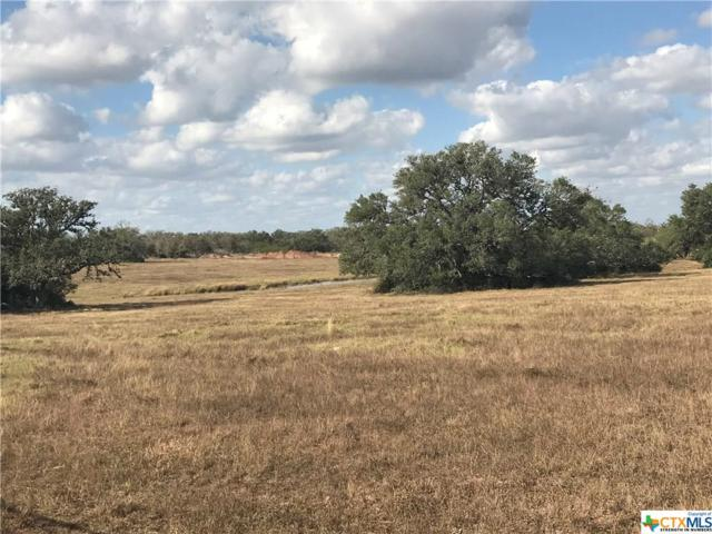3445 Cattle Guard Rd. Road, Cuero, TX 77954 (MLS #330388) :: RE/MAX Land & Homes