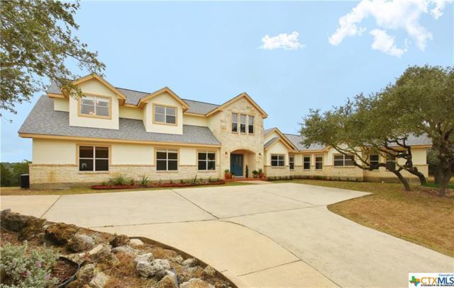San Antonio, TX 78261 :: The Suzanne Kuntz Real Estate Team