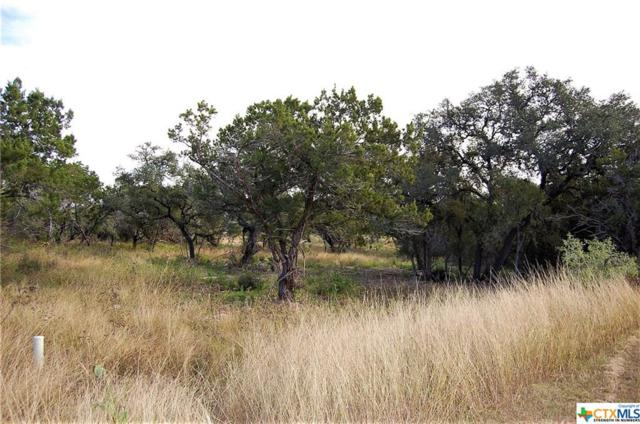 2517 Otter Way, New Braunfels, TX 78132 (MLS #330455) :: Erin Caraway Group