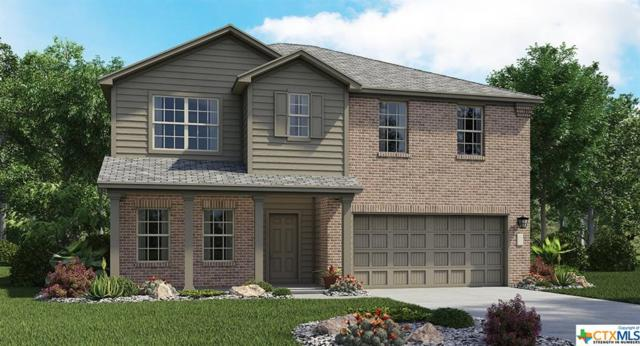 3811 Endicott Drive, Killeen, TX 76549 (MLS #330682) :: Texas Premier Realty