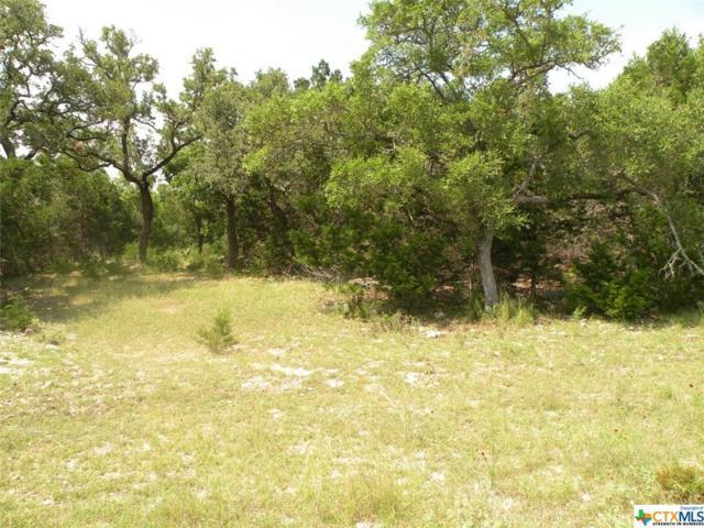 1043 Pegasus, Spring Branch, TX 78070 (MLS #330825) :: Magnolia Realty