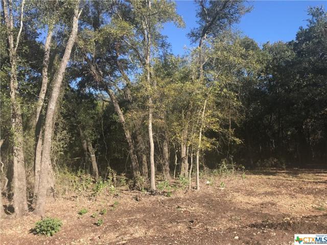 Lot 10 T.H. Jones Mill Way, Salado, TX 76571 (MLS #330904) :: Magnolia Realty