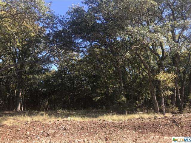 Lot 12 T.H. Jones Mill Way, Salado, TX 76571 (MLS #330907) :: Magnolia Realty