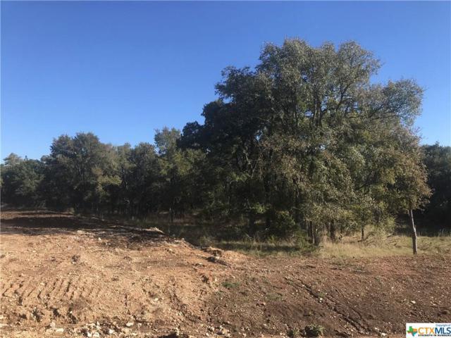 Lot 15 T.H. Jones Mill Way, Salado, TX 76571 (MLS #330910) :: Magnolia Realty
