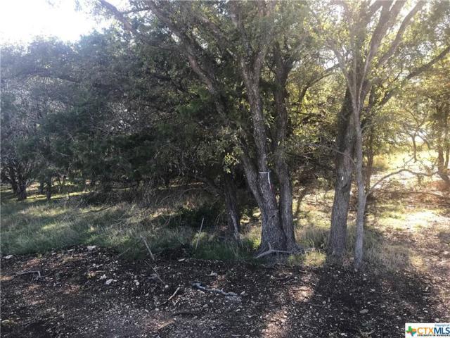 Lot 17 T.H. Jones Mill Way, Salado, TX 76571 (MLS #330916) :: Magnolia Realty
