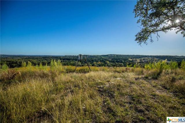 25710 Singleton Bend East, Marble Falls, TX 78654 (MLS #331049) :: Erin Caraway Group