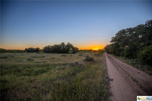 Johnson City, TX 78636 :: Erin Caraway Group