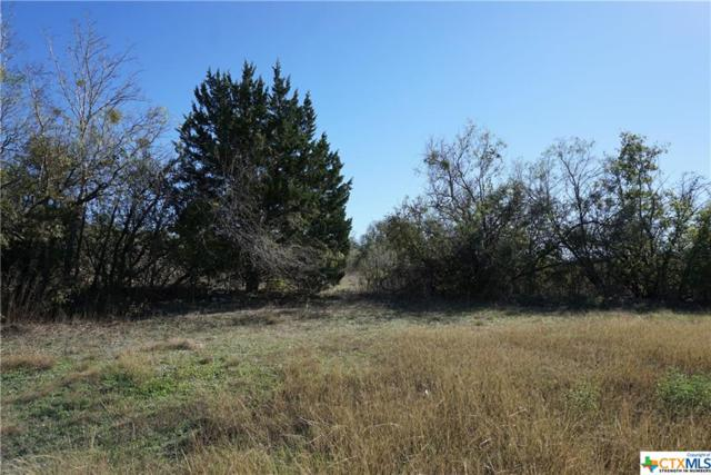 0 El Camino Real (Hwy. 21), Uhland, TX 78640 (MLS #331058) :: RE/MAX Land & Homes