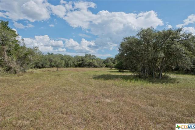 Tract 9 Bischoff Road, Inez, TX 77968 (MLS #331279) :: RE/MAX Land & Homes