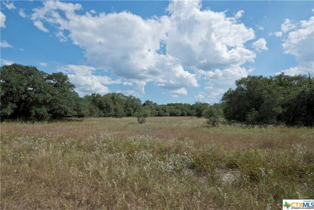 Tract 8 Bischoff Road, Inez, TX 77968 (MLS #331295) :: RE/MAX Land & Homes