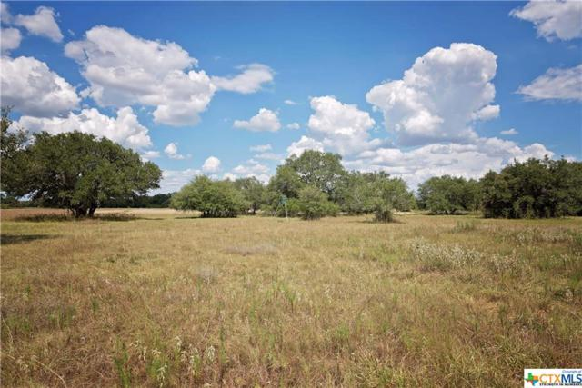 Tract 6 Bischoff Road, Inez, TX 77968 (MLS #331316) :: RE/MAX Land & Homes