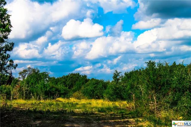 Tract 40B Boushka Drive, Burnet, TX 78611 (MLS #331442) :: Magnolia Realty