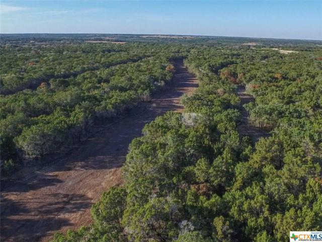 7 Creeks Tract 13-B, Burnet, TX 78611 (MLS #331463) :: Magnolia Realty