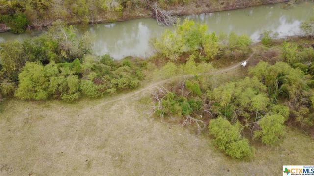 1206 Al Calda De La Bahia, Goliad, TX 77963 (MLS #331524) :: RE/MAX Land & Homes