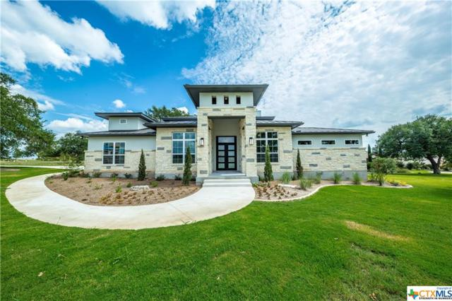 1250 Vintage Way, New Braunfels, TX 78132 (MLS #331685) :: Erin Caraway Group