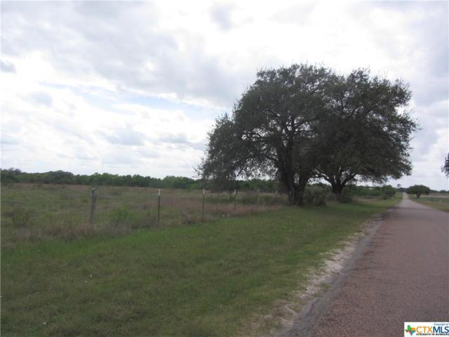 000 Manahuilla Street, Goliad, TX 77963 (MLS #332212) :: RE/MAX Land & Homes