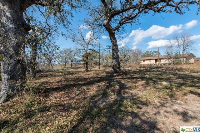 5969 State Highway 123, Stockdale, TX 78160 (MLS #332303) :: Magnolia Realty