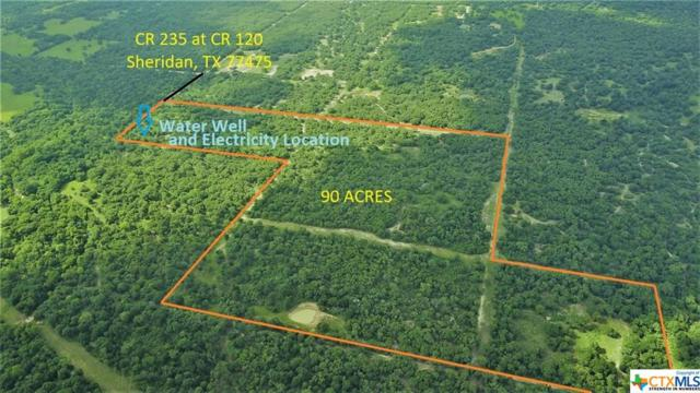 000 Cr 235 @ Cr 120, OTHER, TX 77986 (MLS #332823) :: Erin Caraway Group