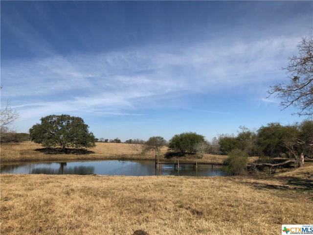 2512 County Rd 239, Gonzales, TX 78629 (MLS #333095) :: Erin Caraway Group