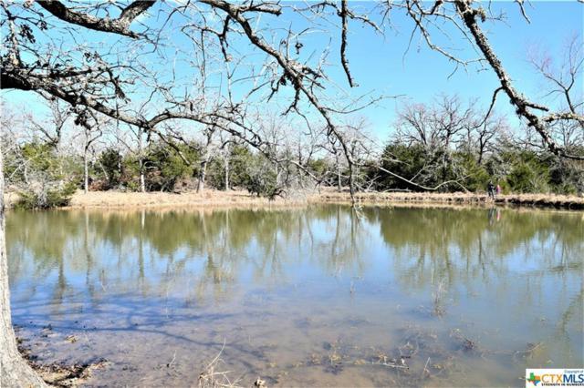 5414 W Old Lockhart Rd (Tract 1), Flatonia, TX 78963 (MLS #333351) :: RE/MAX Land & Homes