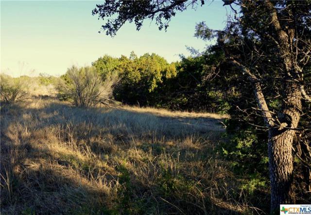 204 Ensenada, Canyon Lake, TX 78133 (MLS #333403) :: Magnolia Realty