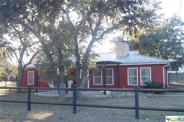 1524 Hedgestone, Canyon Lake, TX 78133 (MLS #333516) :: Magnolia Realty