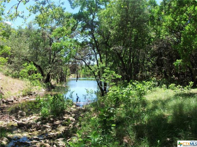 1406 Canyon Lake, Canyon Lake, TX 78133 (MLS #333568) :: Berkshire Hathaway HomeServices Don Johnson, REALTORS®