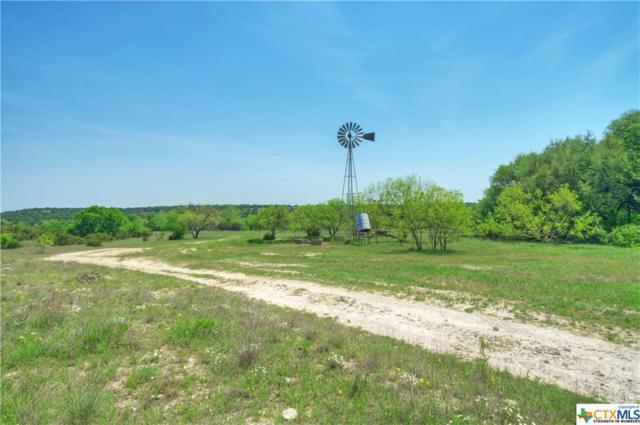 3452 County Road 2109, Lometa, TX 76853 (MLS #333579) :: RE/MAX Land & Homes