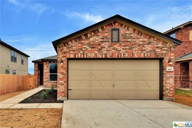 1107 Sage Brush, Temple, TX 76502 (MLS #333580) :: Erin Caraway Group