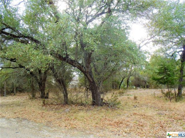 4331 Lago Vista Drive, Belton, TX 76513 (MLS #333723) :: Brautigan Realty