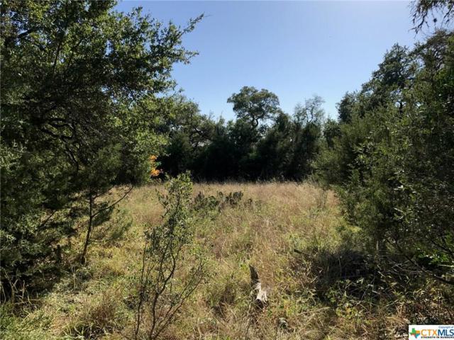 314 Ridge Country, New Braunfels, TX 78132 (MLS #333759) :: Magnolia Realty