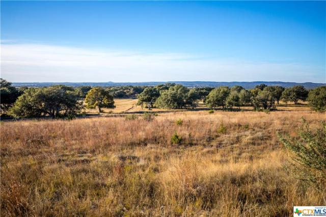 TBD Us Hwy 290, Stonewall, TX 78635 (MLS #333766) :: Erin Caraway Group