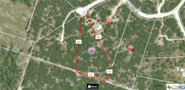 109 High Mesa, Gatesville, TX 76528 (MLS #333787) :: Magnolia Realty