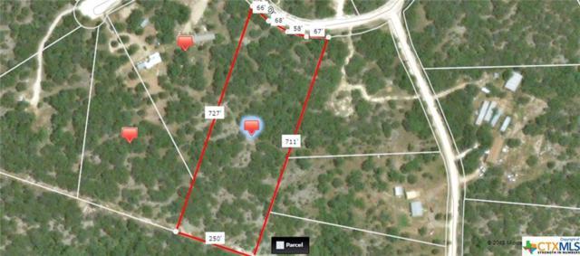 103 High Mesa, Gatesville, TX 76528 (MLS #333808) :: Magnolia Realty