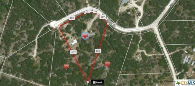 105 High Mesa, Gatesville, TX 76528 (MLS #333812) :: Magnolia Realty