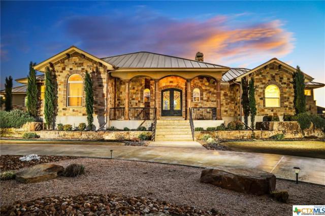 1670 Decanter Drive, New Braunfels, TX 78132 (MLS #334150) :: Magnolia Realty