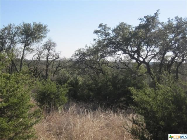 189 Morning View, New Braunfels, TX 78132 (MLS #334447) :: Magnolia Realty