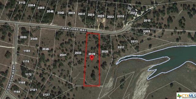 2029 San Jose Way, Canyon Lake, TX 78133 (MLS #334552) :: Magnolia Realty