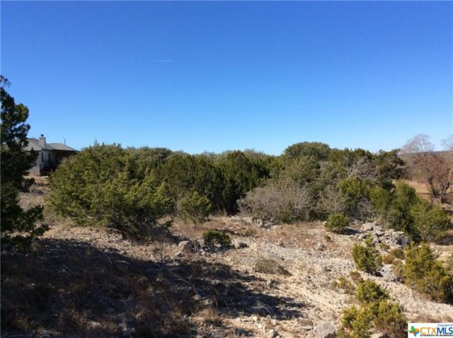 1108 Royal Eagle Drive, Fischer, TX 78623 (MLS #334584) :: Magnolia Realty