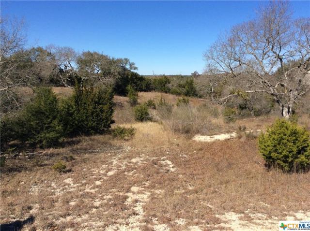 1780 Soaring Eagle Drive, Fischer, TX 78623 (MLS #334585) :: Magnolia Realty
