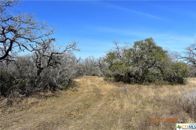 0 Highway 80 / County Road 285, OTHER, TX 78118 (MLS #335795) :: Magnolia Realty