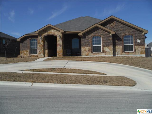 6209 Newcastle Drive, Killeen, TX 76549 (MLS #335819) :: Texas Premier Realty