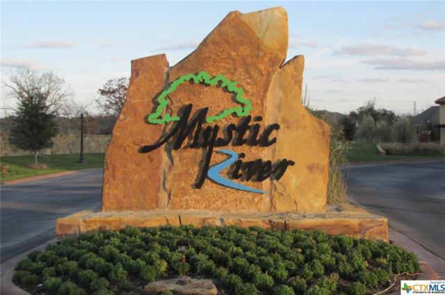2129 Rivers Edge Drive, Belton, TX 76513 (MLS #335941) :: Erin Caraway Group