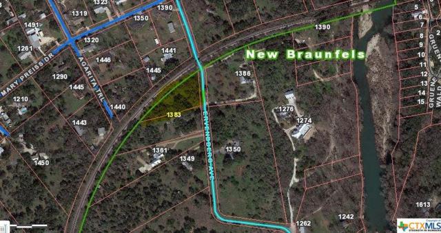 1387 Ervendberg, New Braunfels, TX 78130 (MLS #335947) :: Magnolia Realty