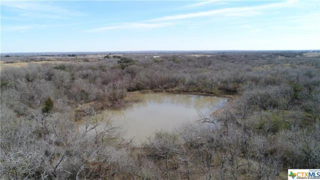 TBD Brietzke Road, Seguin, TX 78155 (MLS #336024) :: Magnolia Realty