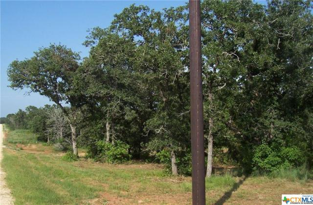0 (Lot 176) Sam Houston, Luling, TX 78648 (MLS #336426) :: Magnolia Realty