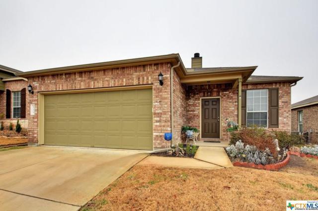 533 Moonwalker Trail, Buda, TX 78610 (MLS #336463) :: Magnolia Realty
