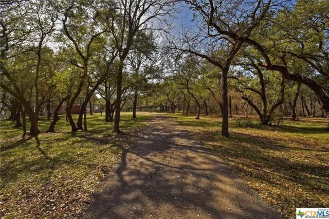 215 Hy, Buda, TX 78610 (MLS #336607) :: Magnolia Realty