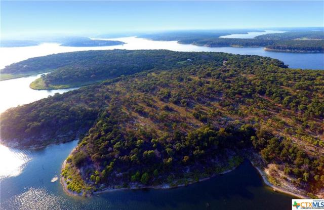 Lot 7 Block 2 Lakeview Estates Drive, Morgan's Point Resort, TX 76513 (MLS #336912) :: Magnolia Realty